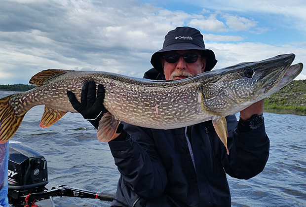 Bruce Sleboda with the Biggest Pike He's Ever Caught in Canada