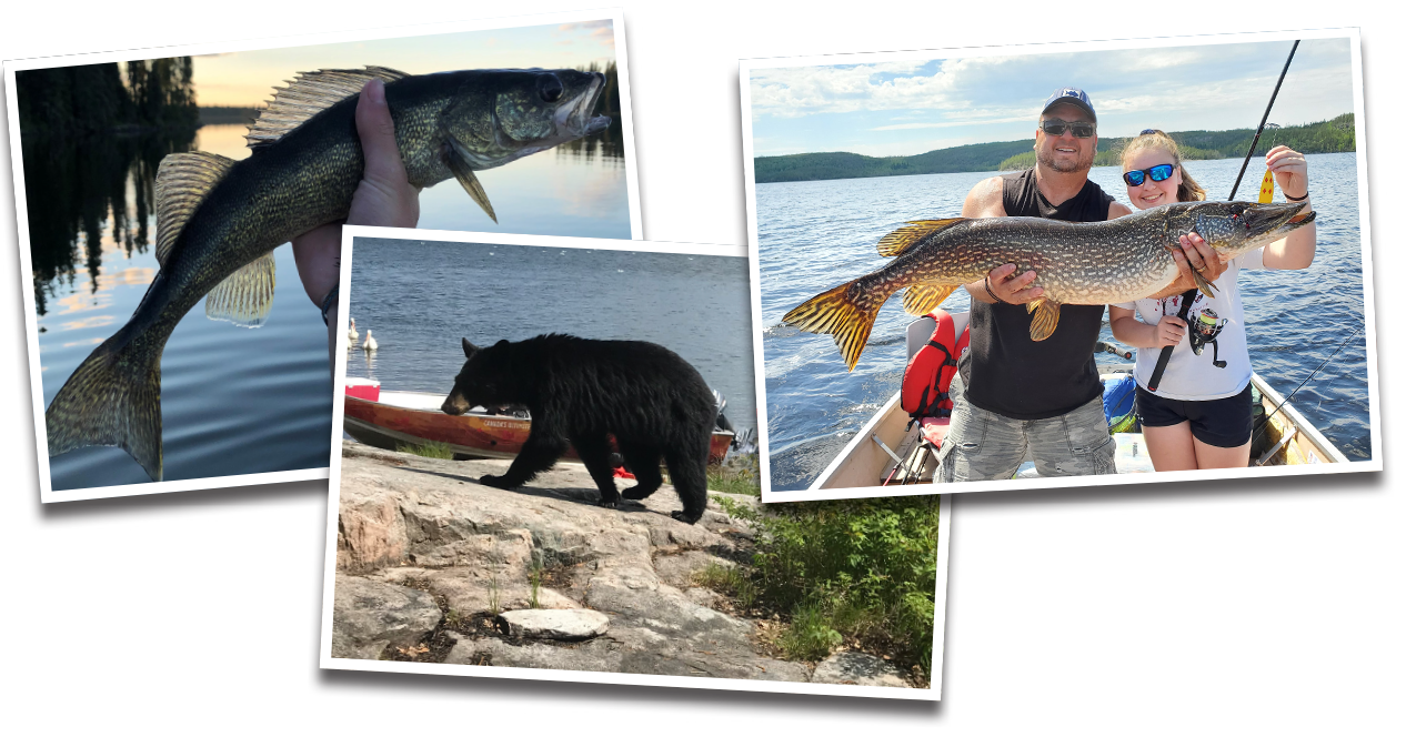 Photos from our guests at Kississing Lake Lodge!